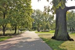 park_GrodziskParkSkarbkow_1