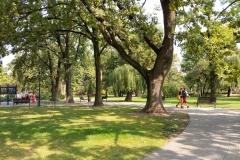 park_GrodziskParkSkarbkow_8