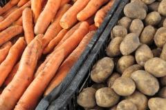 Targ 11_ziemniaki, marchew